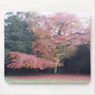 Mousepad A árvore com rosa sae da esteira do rato das cores