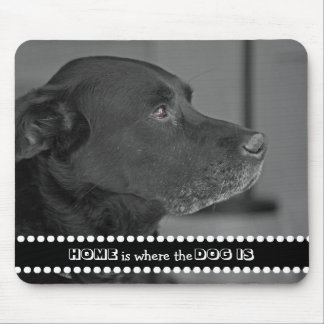 Mousepad A casa da foto do cão é o lugar onde o cão é