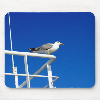 Mousepad A gaivota está sentando-se na parte superior do