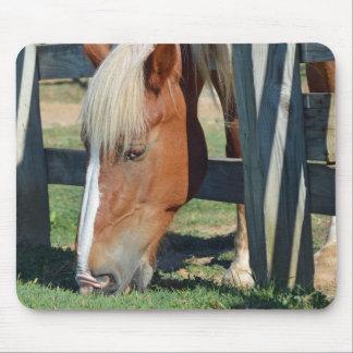 Mousepad A grama é mais verde no outro cavalo lateral