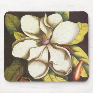 Mousepad A magnólia do vintage floresce a planta com