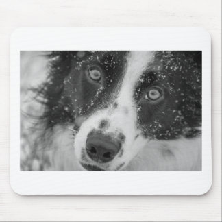 Mousepad A primeira neve de border collie