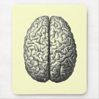 Mousepad Almofada do cérebro