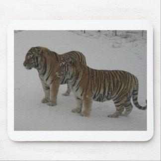 Mousepad Alugueres dois tigres Siberian