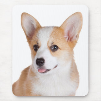 Mousepad Amor do cão de filhote de cachorro do Corgi de