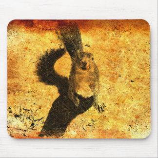 Mousepad Arte animal - esquilo