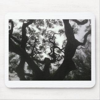 Mousepad Árvore do anjo