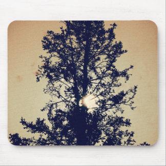 Mousepad Árvore no tapete do rato velho das canvas