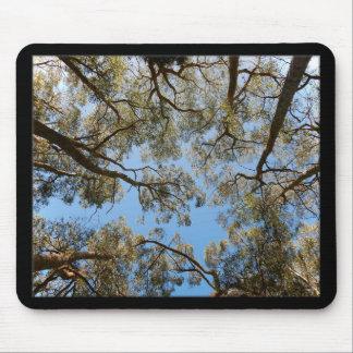 Mousepad Árvores de goma contra um céu azul