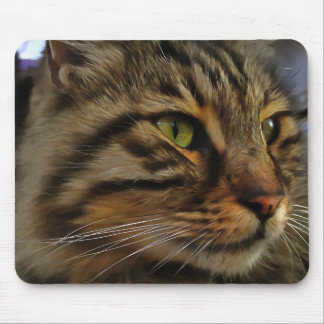 Mousepad Aslan o gato de gato malhado de cabelos compridos