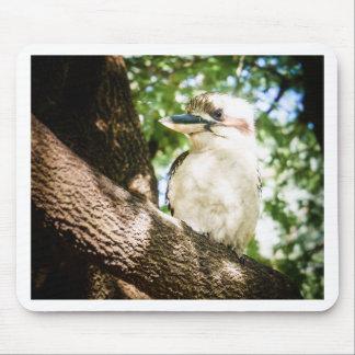 Mousepad Austrália bonito Kookaburra