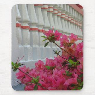Mousepad Azáleas cor-de-rosa pelo patamar da casa de campo,