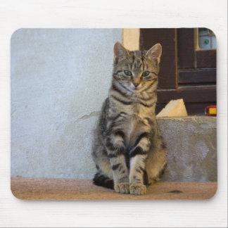 Mousepad Bebê adorável do gato de tigre