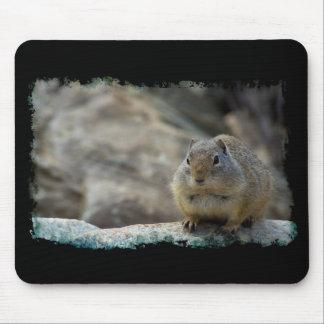 Mousepad Beira bonito super do preto do esquilo à terra