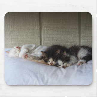 Mousepad Belas Adormecidas