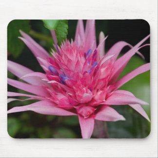 Mousepad Beleza cor-de-rosa