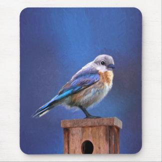 Mousepad Bluebird (fêmea)