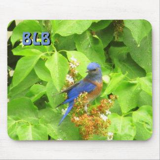 Mousepad Bluebird na conversão do Lilac suas iniciais