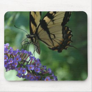 Mousepad Borboleta bonita de Swallowtail do tigre na flor