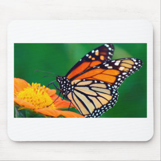 Mousepad Borboleta de monarca bonita