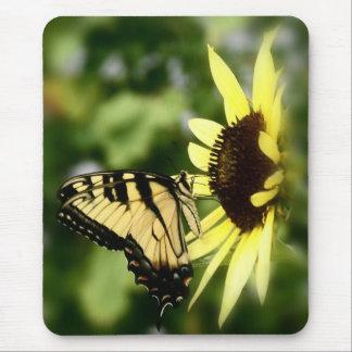 Mousepad Borboleta de Swallowtail do tigre