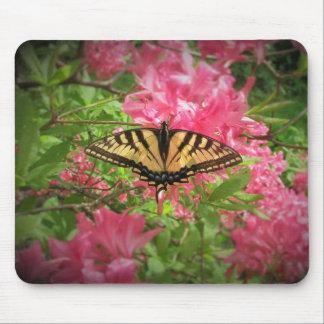 Mousepad Borboleta de Swallowtail em azáleas cor-de-rosa