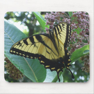Mousepad Borboleta de Swallowtail mim no Milkweed em