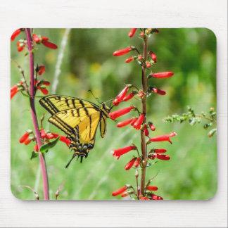 Mousepad Borboleta e Wildflowers de Swallowtail do tigre