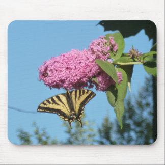 Mousepad Borboleta na borboleta Bush