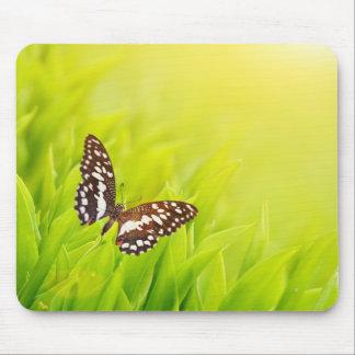 Mousepad Borboleta que senta-se em uma grama verde fresca