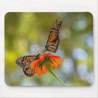 Mousepad Borboletas de monarca em Wildflowers