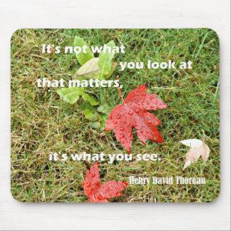 Mousepad byThoreau das citações: Não é o que você olha