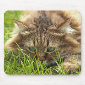 Mousepad Caçador Eyed verde