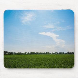 Mousepad Campo do arroz no verão em um dia ensolarado