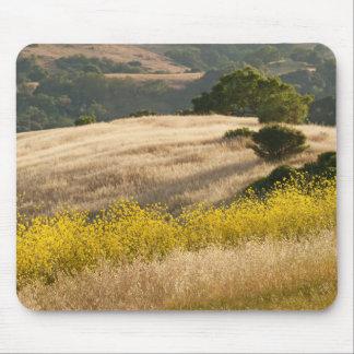 Mousepad Campos do Elysium em Calero Califórnia