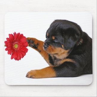 Mousepad Cão de filhote de cachorro de Rottweiler com