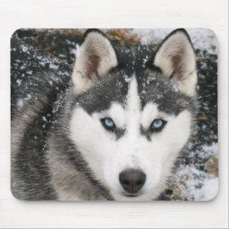 Mousepad Cão de filhote de cachorro do rouco Siberian na