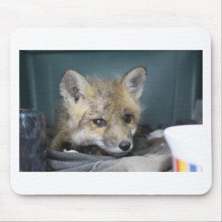 Mousepad Capa de telefone do Fox