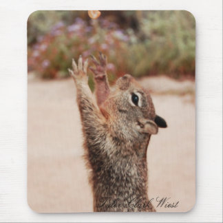 Mousepad Captura 2 do esquilo