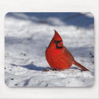 Mousepad Cardeal do norte masculino na neve