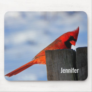 Mousepad Cardeal vermelho no coto de madeira personalizado