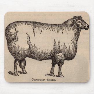 Mousepad Carneiros do século XIX de Cotswold do impressão
