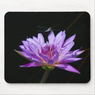 Mousepad Cartões de jogo roxos da libélula de Lotus