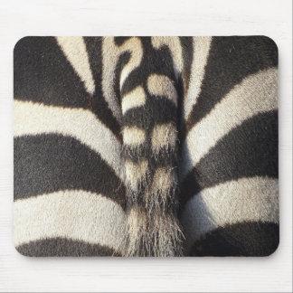 Mousepad Cauda da zebra