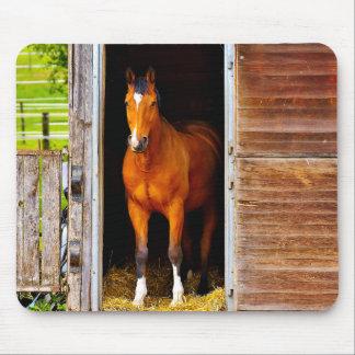 Mousepad Cavalo no estábulo