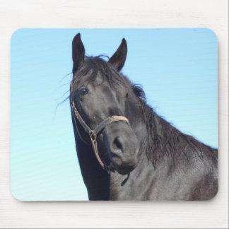 Mousepad Cavalo preto e o céu azul