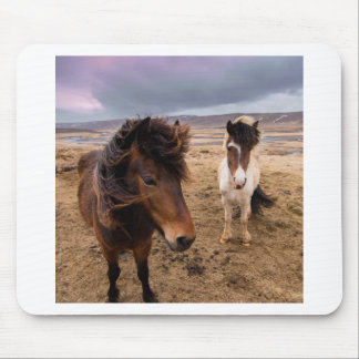 Mousepad Cavalos de Islândia