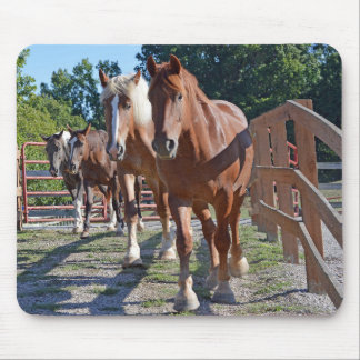 Mousepad Cavalos dirigidos de volta ao celeiro