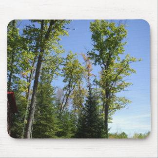 Mousepad Cena do céu da árvore da queda