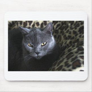 Mousepad Chartreux (karthuizer)